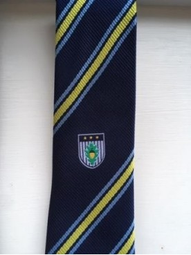 Burgess Hill Academy Tie Yellow