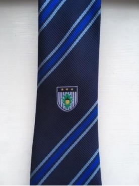 Burgess Hill Academy Tie Blue
