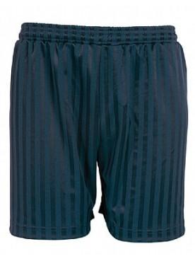 Navy Games Shorts
