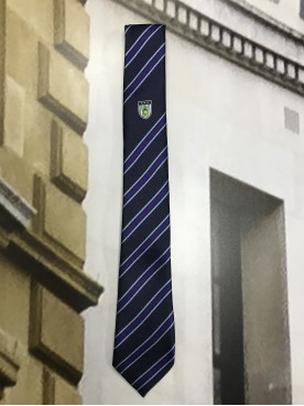 Burgess Hill Academy Tie Purple