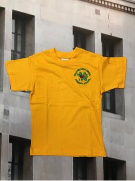 Wisborough Green P.E T Shirt Yellow
