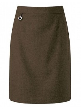 Brown Junior Straight Skirt