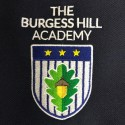 Burgess Hill Academy